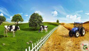tarım, ziraat