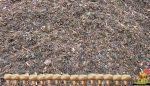 Toprağa kompost uygulamakla sağlanan yararlar