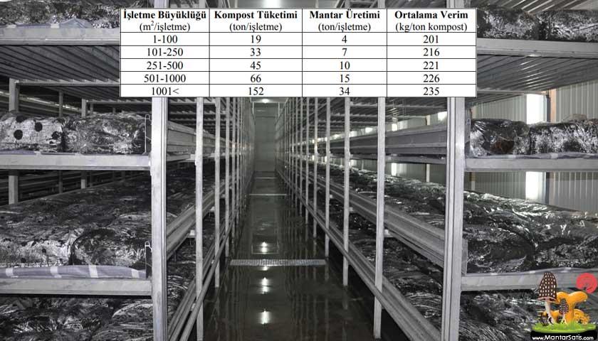 mantar işletme tesisi